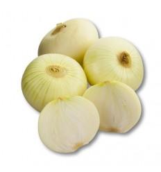 Cebolla de huevo blanca