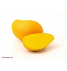 Mango Criollo